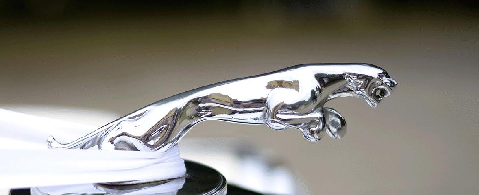 Mark V Jaguars. Mark V Jaguars. Melbourne Jaguar Wedding Cars